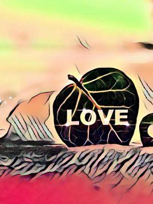LOVE Schriftzug ausgeschnitten aus einem Blatt