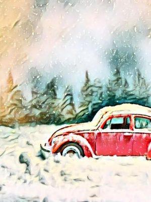 Zugeschneiter Käfer in Winterlandschaft (Effektbild)